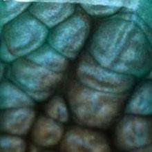Turquoise et onyx